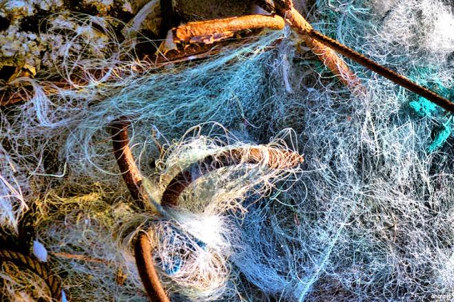 porto de pesca_ figueira da foz