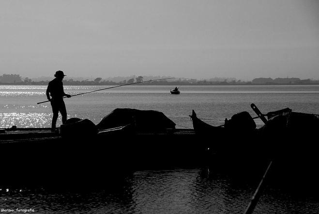 ahcravo_DSC_9190_pescar na marina bws