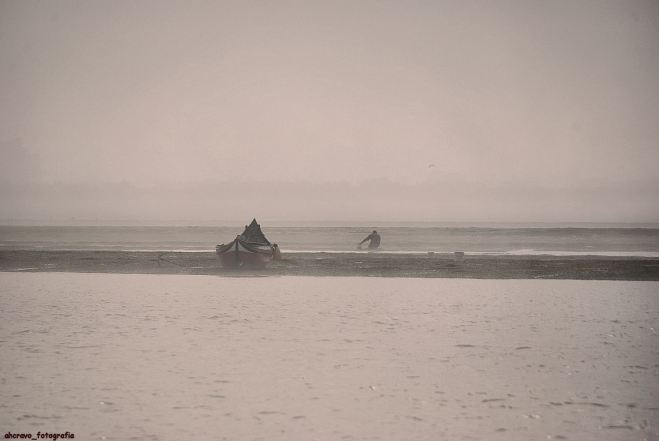 nevoeiro na ria