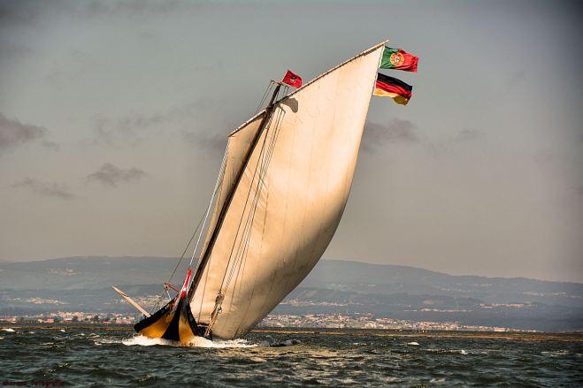 regata 2013