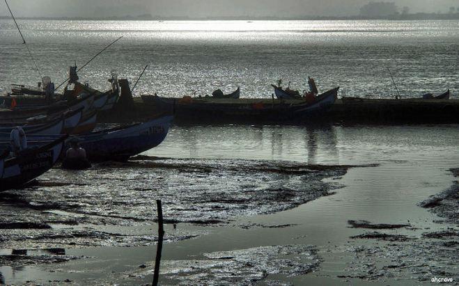 marina dos pescadores da torreira, na maré vazia