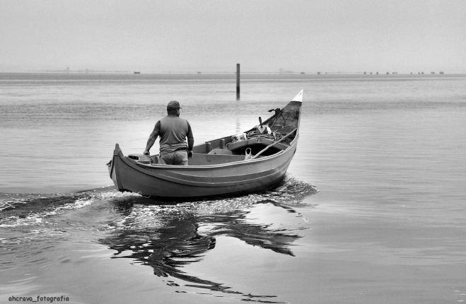 sair para alar redes, torreira, marina dos pescadores