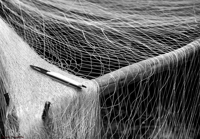 rede de lampreia