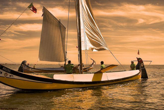 regata de moliceiros, s. paio 2010