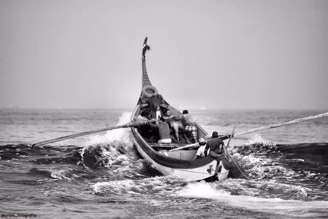 o mar por vício de vencer