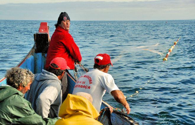 já vai o saco na água e começa a ser largada a manga da mão de barca