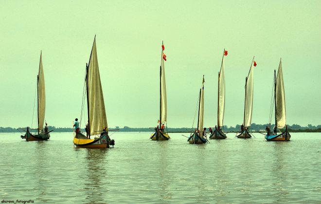 regata do bico em 2010. num dia sem vento os cisnes não voam