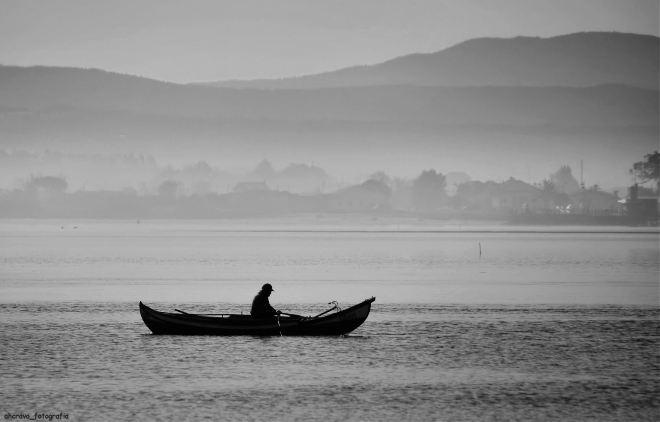 ti costeira, o pescador solitário