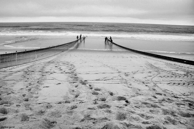 a saco aproxima-se da praia, os bordões apertam as mangas. quem sabe se peixe?