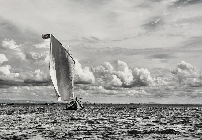 um moliceiro a velejar  para o futuro