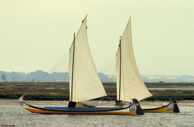 """o """"António Garete"""" a navegar, na regata do bico de 2007"""