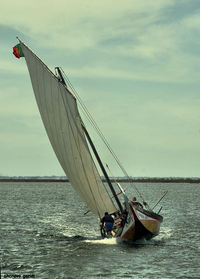 tem o homem mão no barco