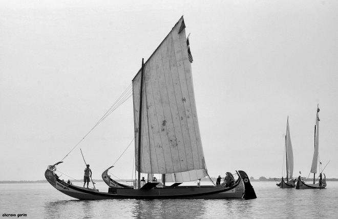 não se veleja sem vento