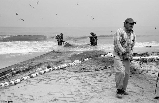 o saco chega à praia, com ele a esperança