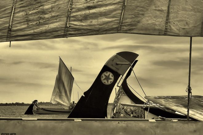 ahcravo_DSC_6788 regata moliceiros bico bw
