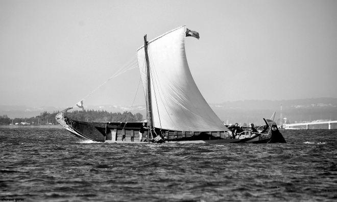 a arte de navegar é a negação do medo