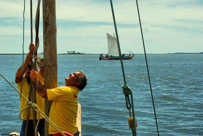 ahcravo_DSC_6804 regata moliceiros bico