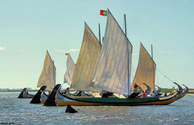 ahcravo_Imagem 1079 regata moliceiros bico