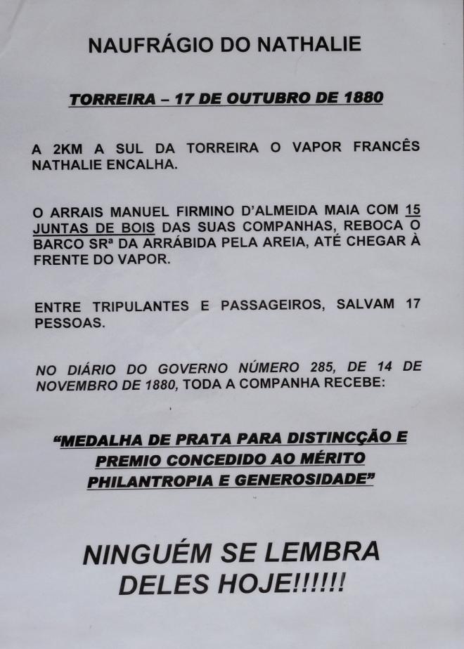 DSC00995 cartaz