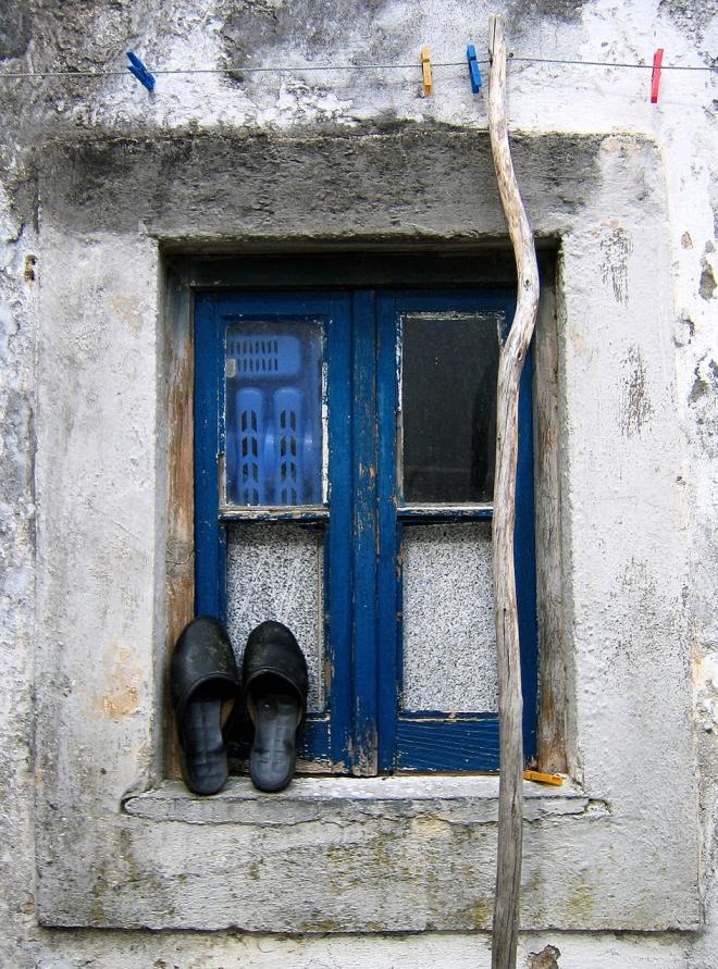 0 ahcravo_olhares janela orelhudo