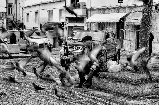 0 ahcravo_DSCN7511 homem pombos condeixa s