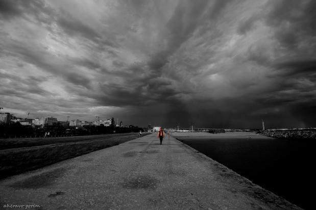 a solidão no molhe norte(4)